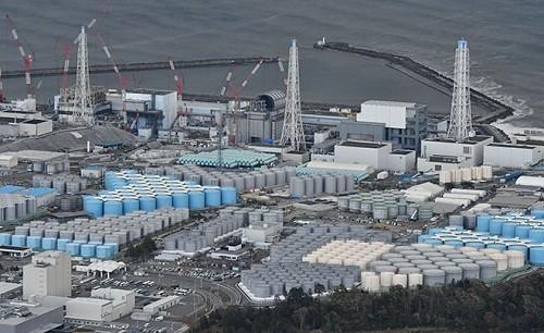Comienza la eliminación de combustible en la piscina en el reactor fundido de Fukushima