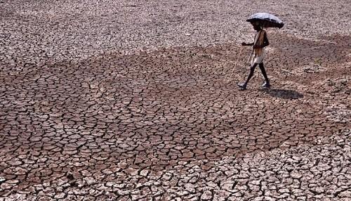 Una ola de calor abrasador ha matado a 36 personas en India en los últimos 30 días