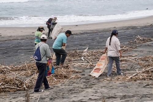 Más de 250 voluntarios participan en gran jornada de reforestación y señalización en Reserva Nacional San Fernando