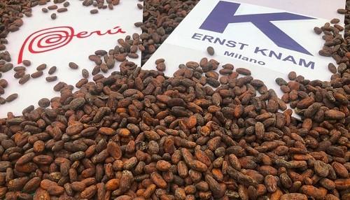 Productores cusqueños exportaron tres toneladas de cacao Chuncho para el 'Rey del Chocolate' de Italia