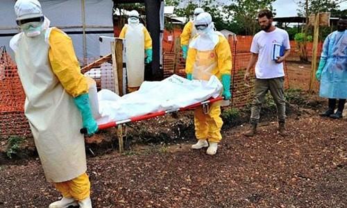 Brote de ébola en el Congo es declarado una emergencia de salud mundial