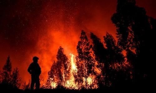 Bomberos combaten incendios forestales masivos en Portugal