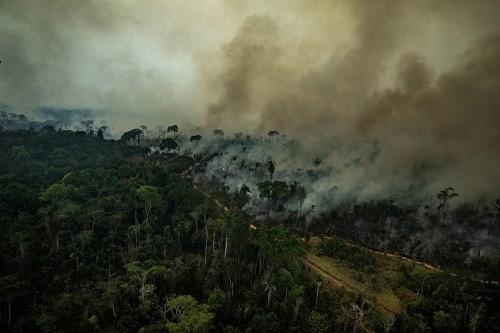 Israel envía grupo para ayudar a Brasil a combatir incendios en la Amazonia