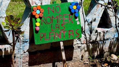 La escuela es el espacio ideal para formar conciencia ambiental