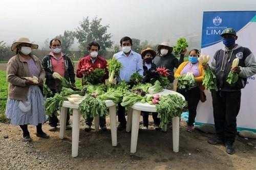 Municipalidad de Lima presenta Feria Agroecológica Allinta Mikuy en San Juan De Lurigancho