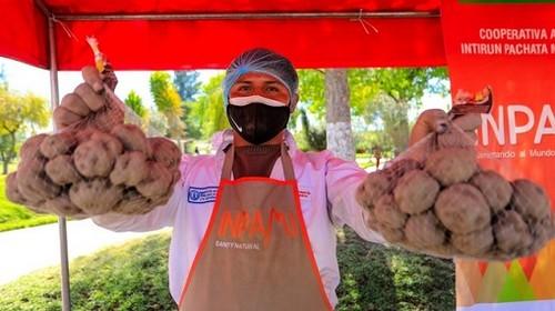 MIDAGRI: Programas Sociales podrán comprar alimentos a productores de la Agricultura Familiar