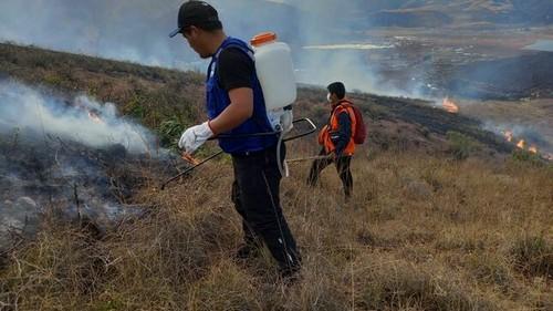 Ministerio del Ambiente coordina acciones con el Gobierno Regional del Cusco para controlar los incendios forestales