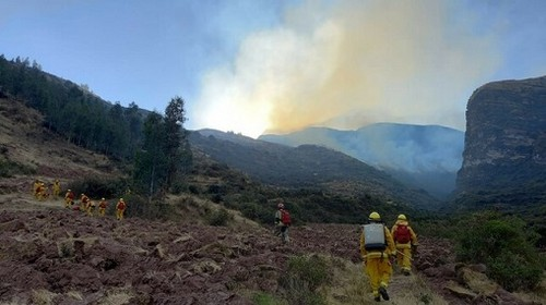Continúan trabajos para controlar incendio forestal de gran magnitud que se registra en el Cusco