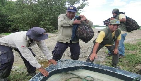 SERNANP y guardaparques comunales voluntarios recuperan en operativo cangrejos rojos en veda