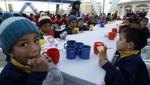 Ministerio de Economía anunció que desnutrición infantil se redujo a 15,2% en el 2011