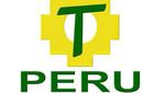 Perú Posible recibiría multa de la ONPE por recibir aportes irregulares