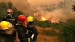 Sebastián Piñera: 'Incendios forestales fueron intencionados'