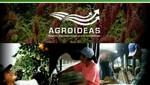 Productores agrarios de Cajamarca  mejorarán calidad de café de exportación