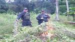 Yván Vásquez, titular regional de Loreto: 'Hay 40 mil hectáreas de sembríos en la región'