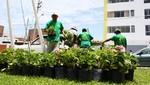 San Miguel lanza programa Techo Verde