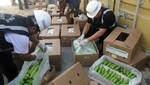 Más de una tonelada y media de cocaína es incautada por la SUNAT en Paita