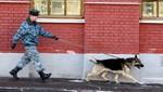 Rusia: Policía captura a delincuente gracias al mal olor de sus medias