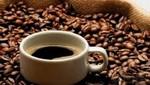 Cofinancian mejora tecnologica para productores de café de exportación en San Martín y Cajamarca