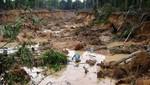 Decretos sobre delitos ambientales entrarán en vigencia desde mañana