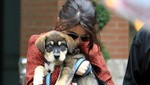 Mascota de Selena Gomez casi muere por comer piedras