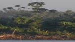 Lotes de hidrocarburos en áreas naturales protegidas