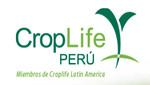 CROPLIFE PERÚ propone estrategias para disminuir incidencia de plagas e incrementar producción nacional de café