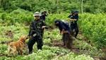 Monzón: Al menos tres muertos en enfrentamiento entre policías y cocaleros en Huánuco