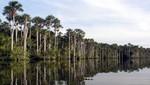 Reserva Nacional Tambopata celebra su 12 aniversario