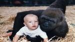 Niña jugando con un gorila sacude YouTube [VIDEO]