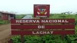 Guardaparques y universitarios juntos en jornada de limpieza de residuos sólidos en la Reserva Nacional de Lachay