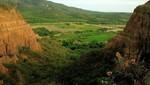Cajamarca cuenta con dos nuevas Áreas de Conservación Privada para preservar sus bosques