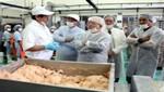 Reconocidos chefs visitan instalaciones del Instituto Tecnológico Pesquero