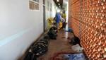 Colombia: explosión de granadas deja 10 campesinos muertos en Antioquia