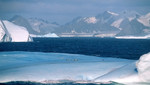 """Inglaterra bautiza como """"Tierra de la Reina Isabel"""" a porción de la antártida"""