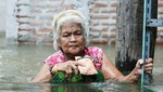 Tailandia: Cocodrilos colman las calles afectadas por las inundaciones