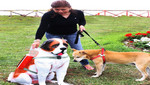 [Convocatoria de Prensa] Alcalde de San Miguel presentará novedosos 'Mascotachos'