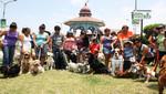 Municipio de San Miguel instala 200 'Mascotachos' para impulsar la campaña 'Limpia lo que tu mascota ensucia'