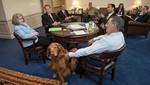 Bravo,el perro que sabe secretos de la defensa militar de Estados Unidos