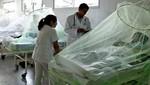 Paraguay: 27 muertes en 2013 y 783 casos sospechosos en un día por dengue