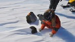 Científicos descubren un meteorito en la Antártida