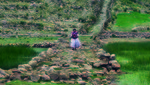 UNESCO acepta en primera instancia expediente regional de Qhapaq Ñan
