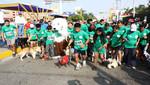 Municipalidad de San Miguel prepara la II Gran Mascotaton