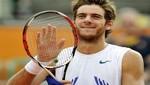 Del Potro quedó a un paso del sexto puesto de la ATP