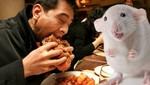 China: detienen a una red que vendía carne falsa