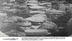 Los Ocho Marineros: 7 de mayo de 1932