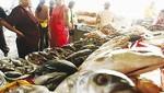 """Programa Nacional """"A Comer Pescado"""" llega a las regiones de Ayacucho y Junín"""