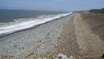 Playas de San Miguel se encuentran limpias