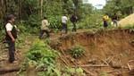 Condenan a tres años de pena privativa de libertad efectiva por deforestar la Reserva Nacional Tambopata