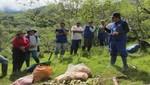 Agricultores de Andamarca en Junín exportan paltas a Europa