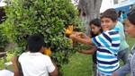 Más de 500 niños barranquinos celebraron su día con show infantil